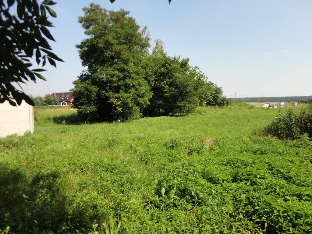 ProsperHome.pl - centrum nieruchomości: Wojnowice